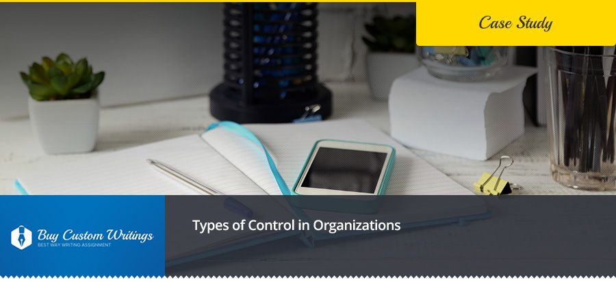 Types of Control in Organizations Free Essay